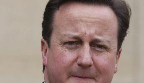 Cameron warnt vor Rassismus im englischen Fußball (Foto)