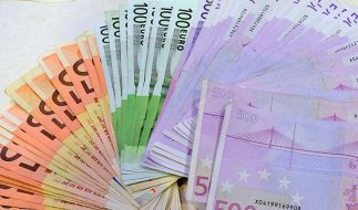 CDU und FDP erhalten weniger Großspenden (Foto)