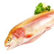 Ekelhaft! DIESE Fisch-Produkte stecken voller Chemie (Foto)