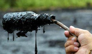 Chevron soll in Ecuador 18 Milliarden Dollar zahlen (Foto)