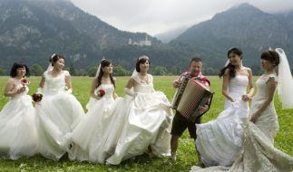 Chinesen lieben Europa (Foto)