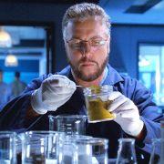Auch ohne Gil Grissom ist CSI - Den Tätern auf der Spur noch immer ein Hit.