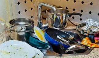 Da ist der Gourmetkoch wohl nicht mehr zum Spülen gekommen. (Foto)