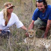 Die Katze kann den Kuscheleinheiten mit Geparden gar nichts abgewinnen, ihre Freundin Rebecca (links) dagegen schon.
