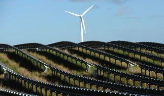 Das Angebot für Ökostrom aus alternativen Energiequellen ist kaum noch teurer als ein konventioneller Stromtarif. (Foto)