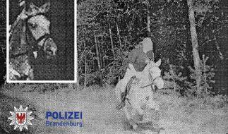 Das Foto einer Radarfalle von einem besonders eiligen Pferd in Brandenburg. (Foto)
