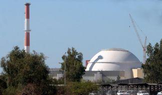 Das Kraftwerk in Buschehr (Foto)