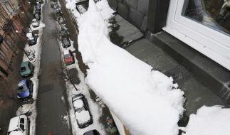 Das müssen Fußgänger beachten (Foto)