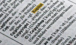 Das Urheberrecht wird 2009 zum ersten Mal wohl auch eine Rolle im Wahlkampf spielen. (Foto)