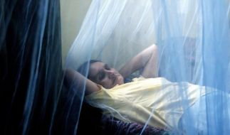 Dengue-Fieber (Foto)