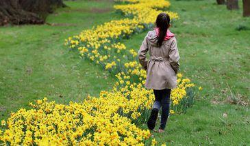 Der kalendarische Frühlingsbeginn am 20. März ist ein deutliches Zeichen, dass der Winter der neu erwachenden Natur Platz macht.