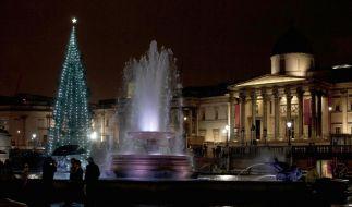 Der Londoner Trafalgar Square wird traditionell von einem Weihnachtsbaum aus Norwegen geziert. (Foto)