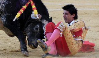 Der Moment, in dem der Stier das Herz des Toreros Víctor Barrio durchbohrt. (Foto)