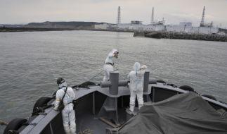 Der Pazifik vor Fukushima strahlt - droht ein weiterer Gau, diesmal für das Meer? (Foto)