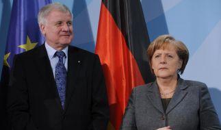 Der Unionsfrieden zwischen Horst Seehofer und Angela Merkel bröckelt und bröckelt. (Foto)