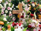 DEU NI Verbrechen Mord Holzklotz Prozess Beginn (Foto)