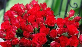 DEU Valentinstag (Foto)