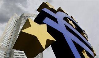 Deutschland berät Beitrag zur Euro-Rettung (Foto)