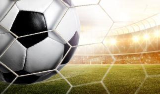 Deutschland trifft am Sonntag (26.03.2017) auf Aserbaidschan zur Fußball-WM-Qualifikation 2018. (Foto)