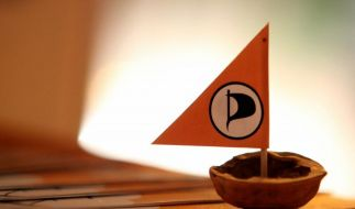 «Deutschlandtrend»: Weiter Rückenwind für Piraten (Foto)
