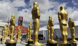 Die 89. Academy Awards werden am 26.02.2017 in Los Angeles verliehen. (Foto)