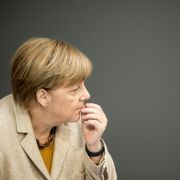 AfD zeigt Angela Merkel an! (Foto)