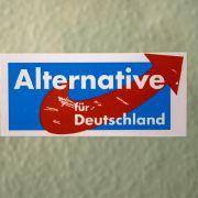 Sitzt die AfD bald im Bundestag? (Foto)