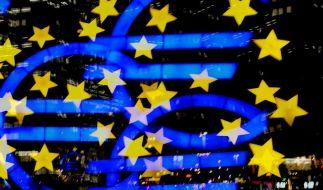 Die Bürgschaften Deutschlands bei der Euro-Rettung könnten auf mehr als 250 Milliarden Euro klettern (Foto)