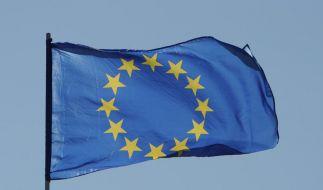 Die Europafahne im Wind: Nicht jeder ist mit der Entscheidung des Nobelkomitees in Oslo zufrieden. (Foto)