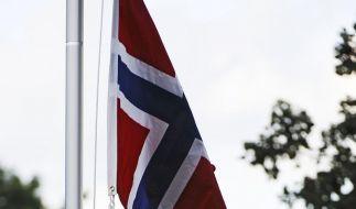 Die Flagge von Norwegen (Foto)