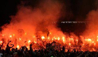 Die Gewalt in Fußballstadien hat ein Rekordhoch erreicht. Politiker wollen DFB und Clubs in die Pflicht nehmen. (Foto)