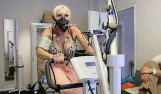 Die Katze lässt ihr Herz beim Kardiologen untersuchen. (Foto)