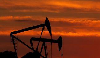 Die Mineralölkonzerne investieren zu wenig in die Erschließung neuer Ölquellen. (Foto)
