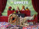 «Die Muppets» mit Hollywood-Stern g