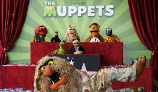 «Die Muppets» mit Hollywood-Stern geehrt (Foto)