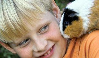 Die passenden Haustiere für Kinder (Foto)