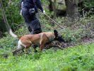 Die Polizei hat bislang keine weiteren Körperteile der Leiche gefunden. (Foto)