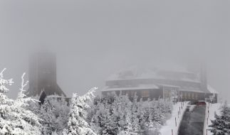 Die Winterpracht hat vier Bundesländer voll im Griff. Diverse Unfälle hat es bereits gegeben. (Foto)
