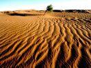 Die afrikanischen Wüsten: Wo jetzt außer Sand nicht viel ist, könnten bald riesige Solaranlagen steh (Foto)