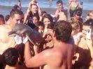 Diese Delfin-Baby starb in den Armen der Touristen. (Foto)