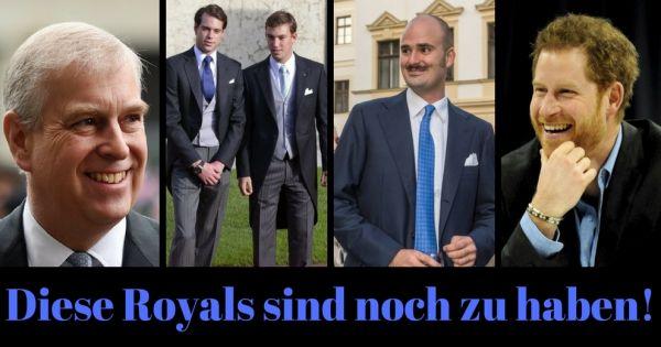 advise single frauen kiel the nobility?