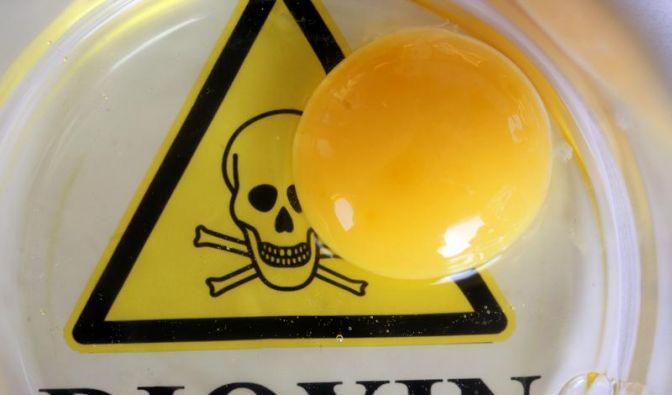 Dioxin: Härtere Straßen für Futterpanscher geplant (Foto)