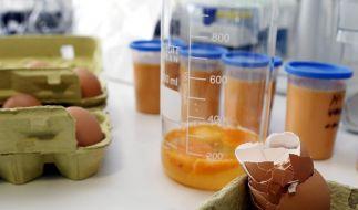 Dioxin-Untersuchung bei Eiern (Foto)