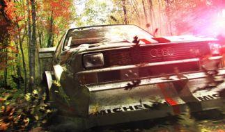 Dirt 3 (Foto)