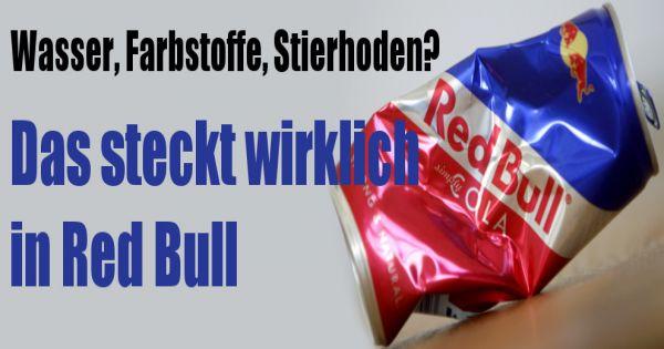 Red Bull Stierhoden