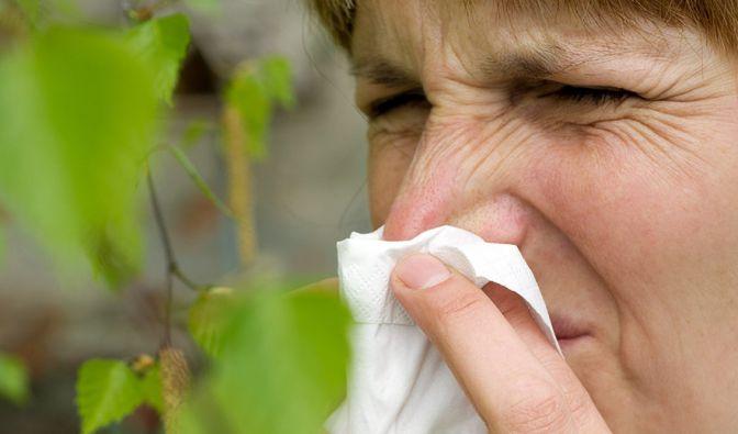 Durch den Klimawandel könnten in Zukunft mehr Menschen an Heuschnupfen erkranken. (Foto)