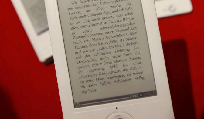 E-Reader verkaufen sich mäßig (Foto)