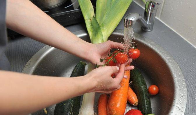 EHEC-Erreger auf Gemüse  (Foto)