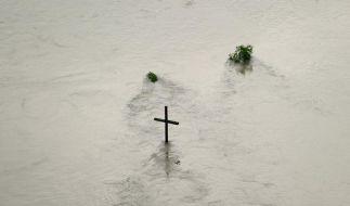 Ein umflutetes Holzkreuz, das die Mündung der Neiße in die Oder in Ratzdorf markiert. (Foto)