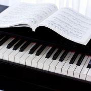 Iranischer Musiker bepöbelt - Konzertabbruch! (Foto)